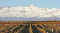 The Bousquet Family, who hail from the Southern French City of Carcassonne, have a long history and prestigious wine making tradition. In 1990, the Bousquet Family arrived in Mendoza, Argentina […]